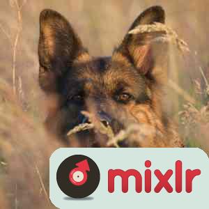 Classic rockmix