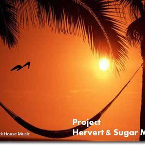 The project Hervert & Sugar