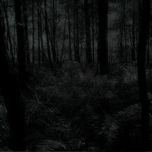 Winter Haze by Augusto Dp (Promo Junio 2012)