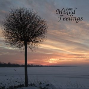 DnB Experiments vol. 2: Mixed Feelings (January 2011)