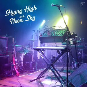 Flying High in a Neon Sky