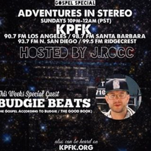 ADVENTURES IN STEREO w/ BUDGIE BEATS