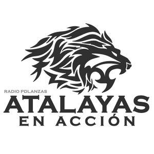 ATALAYAS EN ACCION 14/07/15