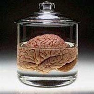 KalamFalsfa Ep01 - Brain in a Vat