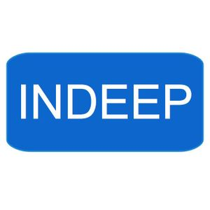 INDEEP vol. 4, radioshow by RXD + interview with Fabio
