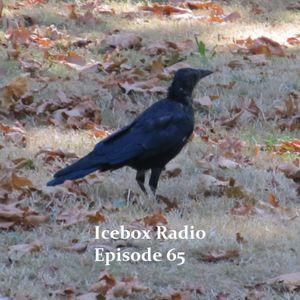 The Icebox Radio Podcast Episode 65