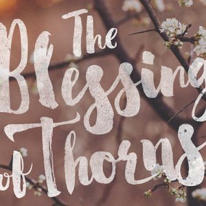 The Blessing of Thorns, Day 1
