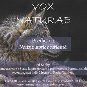 Umani e Predatori (ospite Syria, giovane naturalista bolzanina) (16 Febbraio 2017)