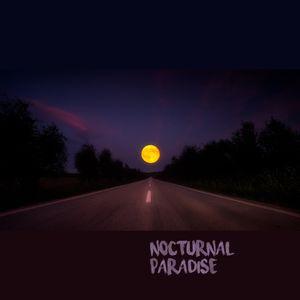 Nocturnal Paradise