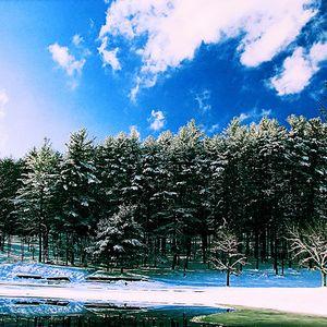 Redok - Winter Delight