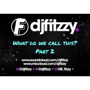 What Do We Call This - PART 2 | TWITTER @DJFITZZY