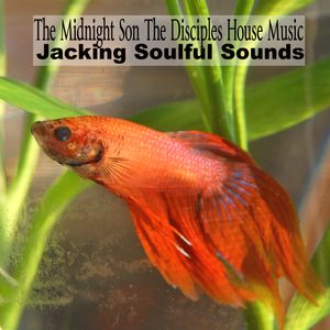 The Midnight Son The Disciples House Music Jackin Soulful Sounds