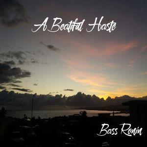 A Beautiful Haste