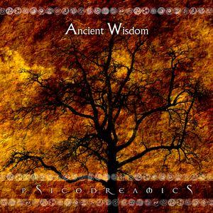Ancient Wisdom (demo mix)