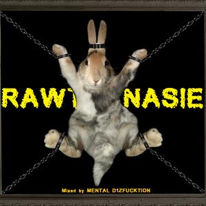 MENTAL D1ZFUCKTION - RAWTHANASIE