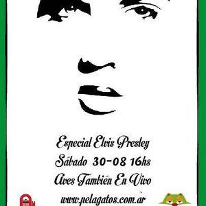 LikiRoots 30/agosto/2014 - Especial Elvis Presley - Agustin Baldassarre en vivo
