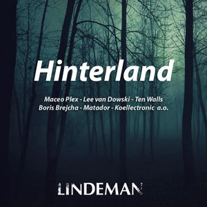 Lindeman - Hinterland #02 (Tech House)