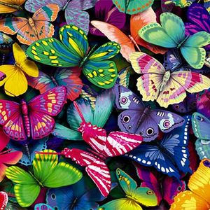The Designer - Butterfly Season, Part 2 (2014)
