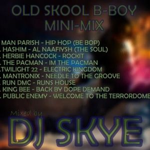 Dj Skye - Old Skool B-Boy vinyl mini mix