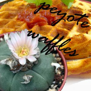 Peyote waffles