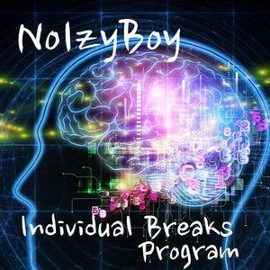 Individual Breaks Program