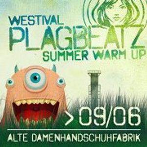 Herr Fuchs & Frau Elster @ Plagbeatz Westival (06.2012)