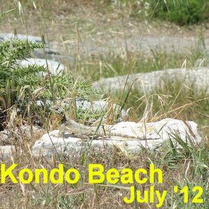 Kondo Beach July 2012