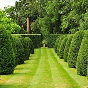 Eliseev - Babylon Gardens