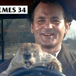 Themes 34 - Bill Murray