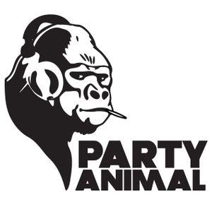 Non Stop Partyin'