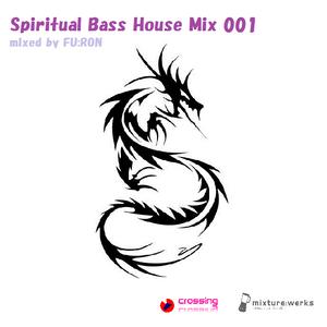 Spiritual Bass House Mix 001