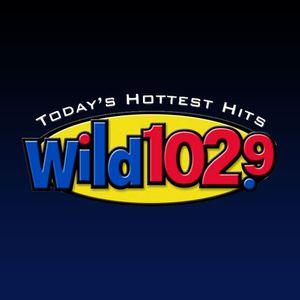 """KWYL WILD 102.9fm """"LABOR DAY PARTY MIX"""" 2012 ( HR 3 PT 1 )"""