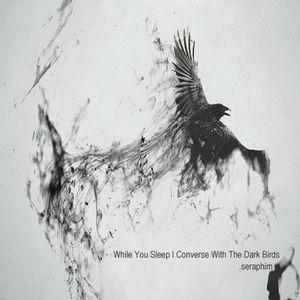 While You Sleep I Converse With The Dark Birds