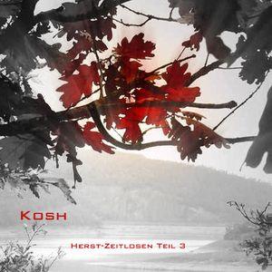 Herbst-Zeitlosen Teil 3