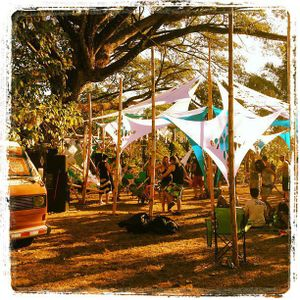 Dj Ali -  Set en Cabuya - Bioluminous Beach Forest Experience
