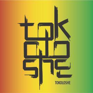 DJ Tokoloshe - Dubstep (2010)