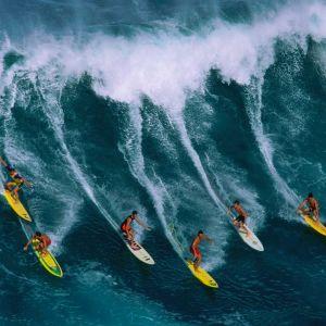 Klaus: The Surfer
