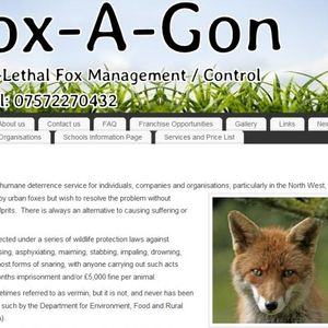 """Urban Fox Problem"" - an alternative to causing suffering and death"