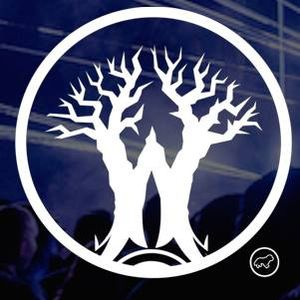 Dark Woods Dream Festival Contest session (7.7.16)