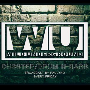 Wild Underground #4