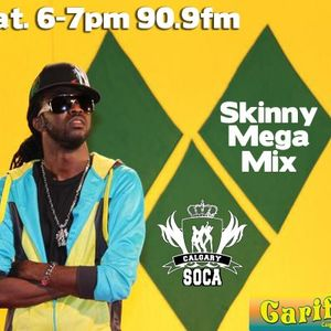 Carnival Mix #101 - Skinny Fabulous Mega Mix - June.08.2013