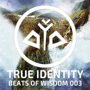 True Identity - Beats of Wisdom 003 Mother Earth (1,5hrs Live 432hz Dance Music)