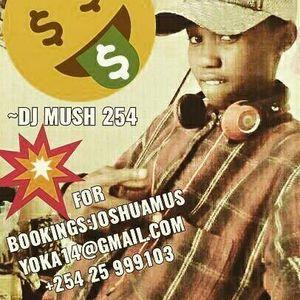 DJMUSH254 SKYLARKING MIX