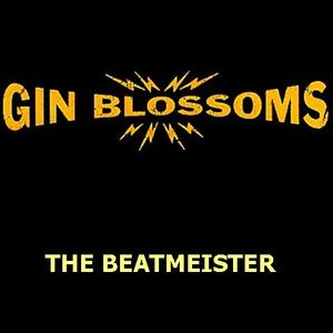 The Gin Blossoms Mixtape - New Mix Experience
