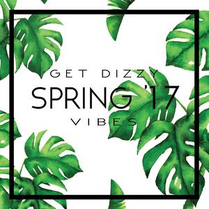 GET DIZZY - SPRING VIBES '17