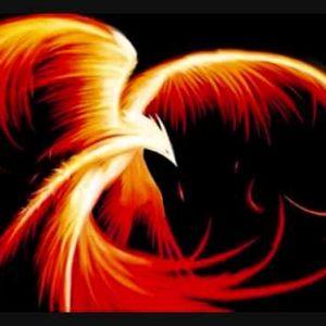 DJFenix - Discover Phoenix fly 001