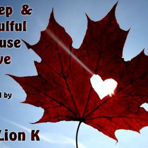 Deep & Soulful House Love mixed by Dj X-Lion_K 11-2011