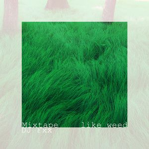 "DJ Fxx Mixtape ""Like Weed"""