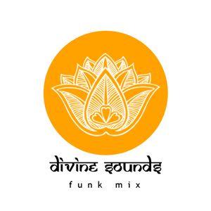 Divine Sounds Funk