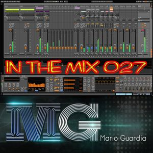 IN THE MIX 027